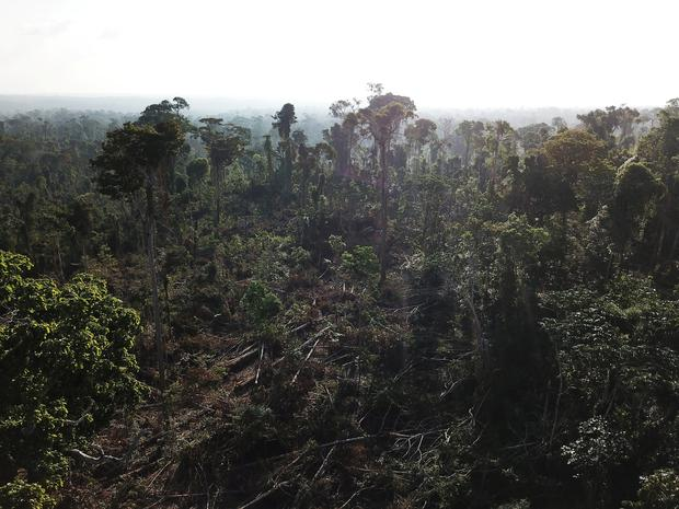 An aerial view shows a tract of Amazon jungle recently cleared by loggers and farmers, before burning it near Altamira, Para state, Brazil August 28, 2019. Picture taken with a drone. REUTERS/Nacho Doce