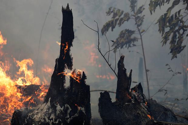 A fire burns trees and brush along the road to Jacunda National Forest. Photo: AP Photo/Eraldo Peres
