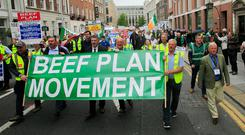 Protest: The march, led by the Beef Plan Movement, at Leinster House