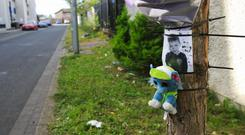 Tragedy: Devin Shepherd (7) is remembered at the scene of the accident