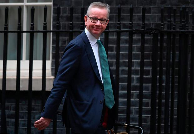 Claim: Michael Gove is in charge of the UK's no-deal planning. Photo: AFP/Getty Images