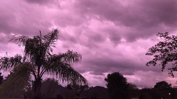 Purple skies over Florida (Emory Cook)
