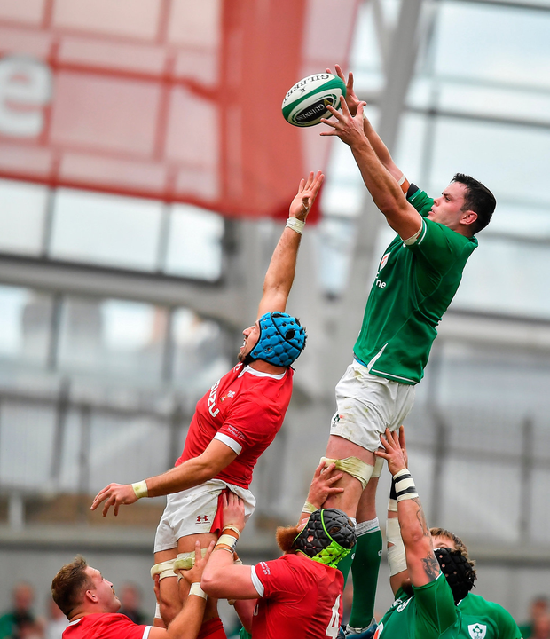 Mick Galwey: 'Maybe that quarter-final against New Zealand