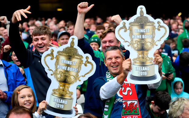 7 September 2019; Ireland fans celebrate their side's first try during the Guinness Summer Series match between Ireland and Wales at Aviva Stadium in Dublin. Photo by David Fitzgerald/Sportsfile
