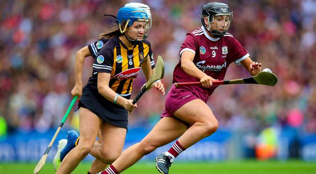 Sports News - Latest Sport News & Results - Independent ie
