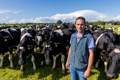 Eamon Sheehan pictured on his farm in Cuffesgrange Co.Kilkenny. Picture Dylan Vaughan