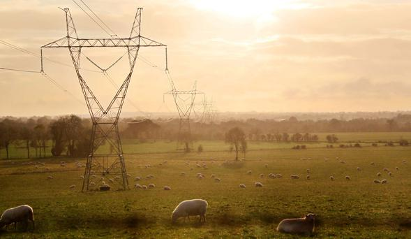 Contentious issue: Powerlines should not be erected on land prior to comprehensive agreements that fully reflect the rights to compensation laid down by statute and case law