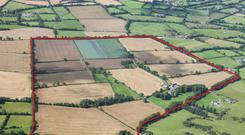Fine spread: The 180ac farm and period residence is located at Ballysax, Co Kildare. The land is in one block and ideal for tillage, dairying and bloodstock enterprises