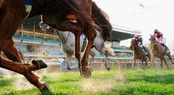 Between the All-Ireland final, the Premier League, English and Irish St Legers and Champions Weekend at Leopardstown and the Curragh, sports fans have a feast to look forward to over the next couple of days and, by extension, there's a lot of interesting betting markets to get stuck in to. Stock photo: Getty
