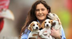 Susan Dudley holds three puppies as preparations get under way for the 2019 Ploughing Championships in Co Carlow. Picture: Mark Condren