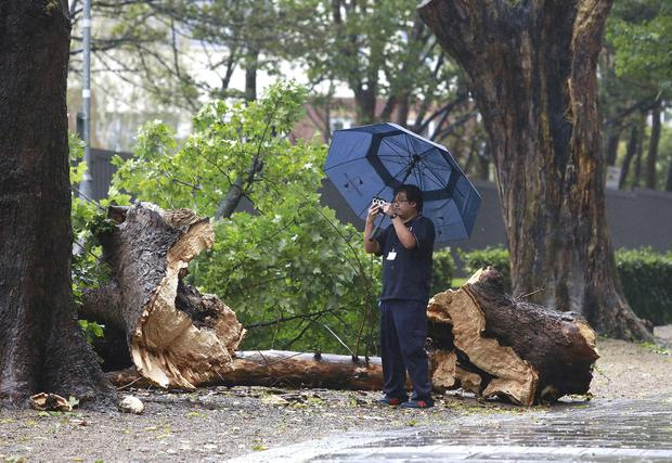A pedestrian takes a picture of a fallen tree next to Military Road in Kilmainham, Dublin. Picture credit; Damien Eagers / INM