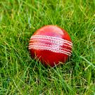 Paul Stirling notched a half-century in Muscat yesterday and George Dockrell took three wickets as Ireland leaned heavily on their T20 experience to overcome Nepal by 13 runs in their fourth and last match of the Oman Pentangular tournament. Stock photo: Getty Images/iStockphoto