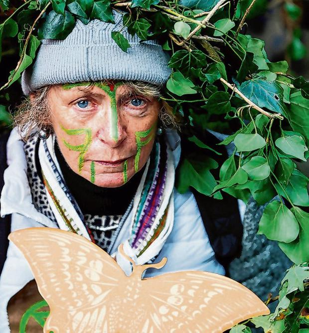 Rallying: Extinction Rebellion climate activists protest at Government Buildings. Photo: Brian Lawless/PA Wire