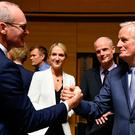 Ongoing talks: Foreign Affairs Minister Simon Coveney shakes hands with EU chief Brexit negotiator Michel Barnier during a meeting in Luxembourg yesterday. Photo: JOHN THYS/AFP via Getty Images