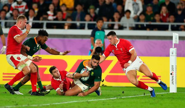 Centre of excellence: South Africa player Damian de Allende dives to score his try against Wales. Photo: Stu Forster/Getty Images