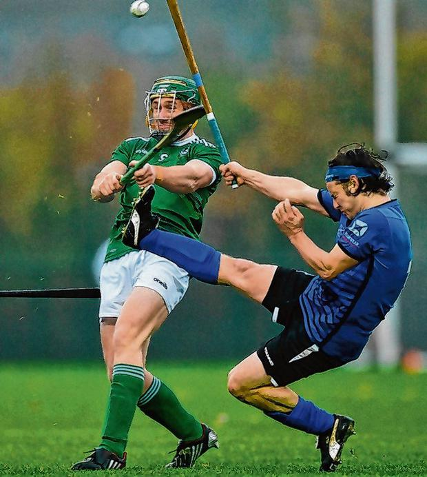 Scotland's Andrew King attempts to block down Ireland's Willie Dunphy during the Senior Hurling-Shinty International at Abbotstown, Dublin, on Saturday. Photo: Piaras Ó Mídheach/Sportsfile