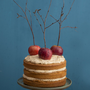 Toffee Apple Cake by Edward Hayden