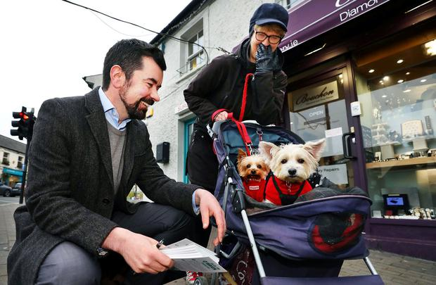 Campaign trail: Joe O'Brien from the Green Party meets Imelda Natin with her dogs Sophie and Suzie in Malahide village. Photo: Steve Humphreys