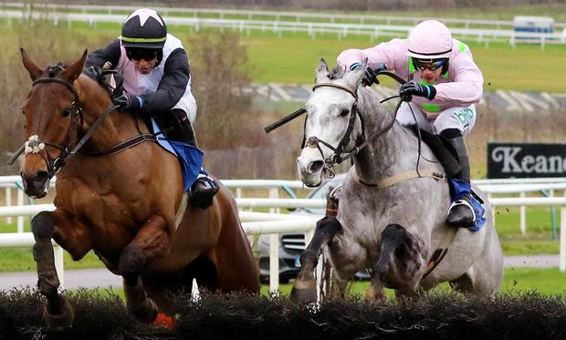 IN THE MIX: Annamix is tipped to win at Fairyhouse