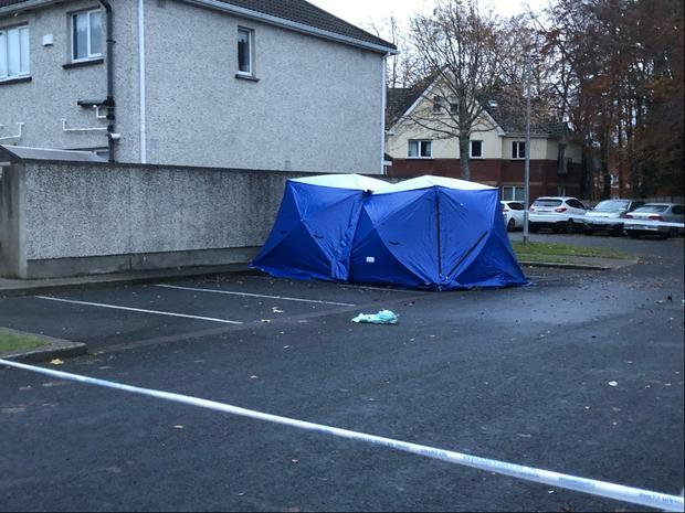 Dublin: Man 'shot dead' before vehicle was set on fire