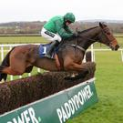 STAR OF THE SHOW: Footpad ridden by Ruby Walsh at Naas last November. Photo.carolinenorris.ie