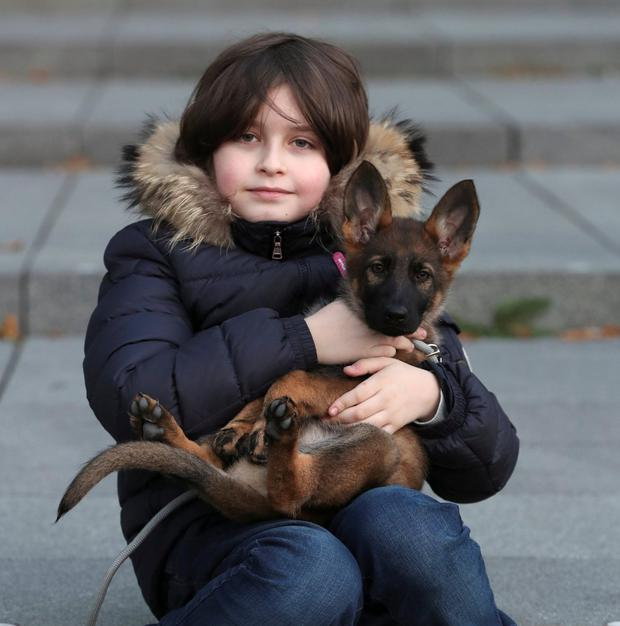 Nine-year-old Belgian student Laurent Simons, who studies electrical engineering and who will soon become the youngest university graduate in the world, poses with his dog Sammie at the University of Technology in Eindhoven, Netherlands. Photo: Yves Herman/Reuters