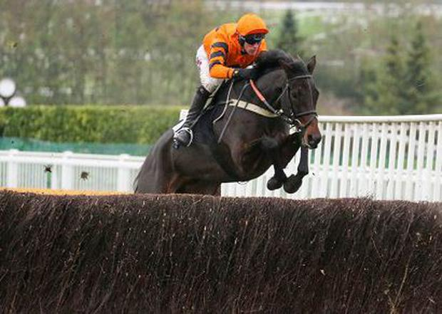 West Approach and Robbie Power winning at Cheltenham. Picture credit: Racing Post