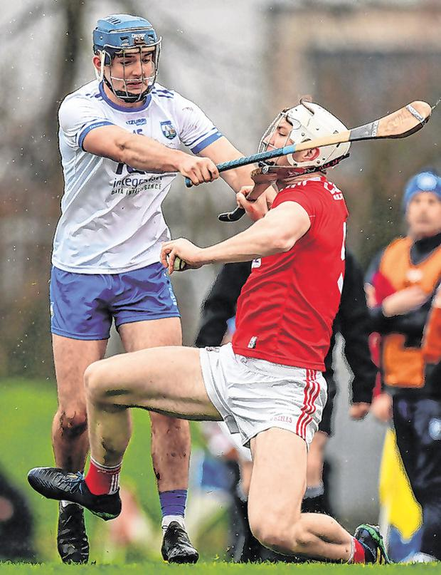 Chris O'Leary of Cork was in the thick of the action at Fraher Field yesterday as he gets a taste of Patrick Curran's hurley. Photo: Eóin Noonan/Sportsfile