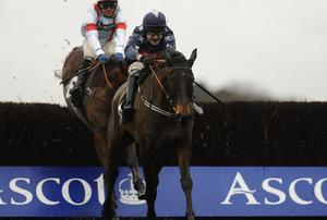 Wyck Hill ridden by Tom Scudamore
