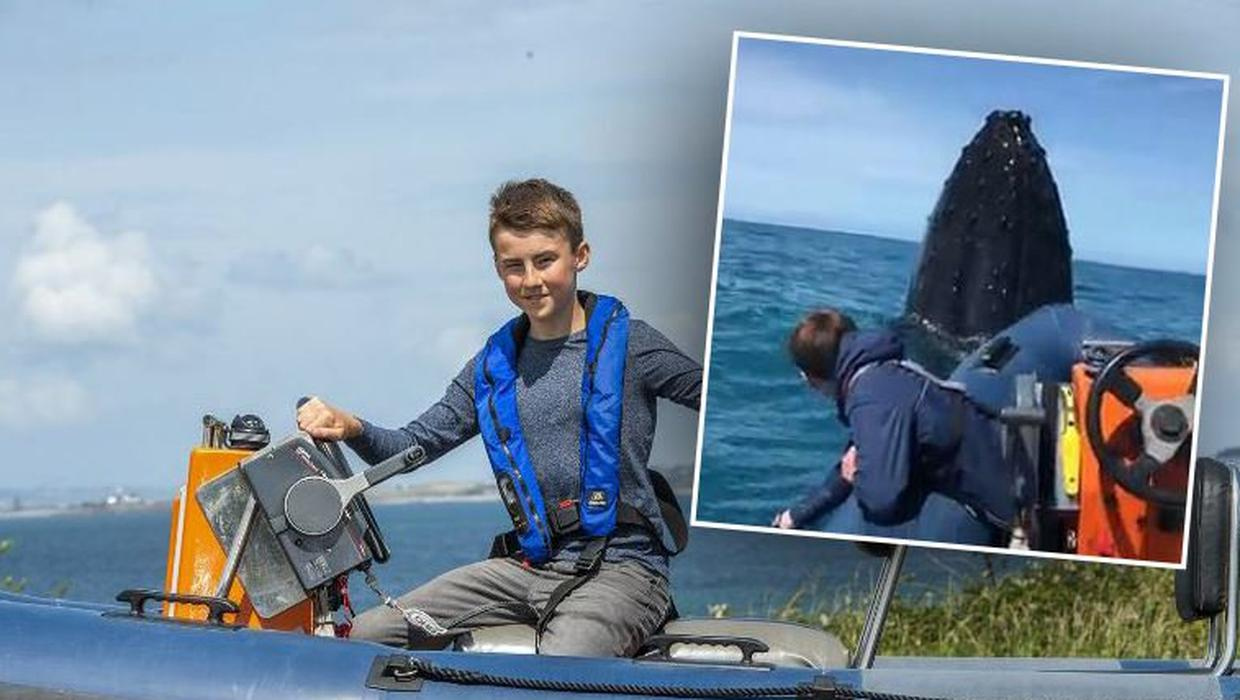 'I've never seen anything like it' – father and son (14) capture amazing up-close encounter with humpback whale off Kerry coast