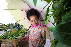 """PICTURES - NO REPRO FEE - 27 /05/ 2015 -Bord Bia?s Bloom, Ireland?s largest gardening, food and family festival will take place in the Phoenix Park, Dublin from Thursday, 28th May ? Monday, 1st June from 9am to 6pm each day. Now in its 9th year, the Bord Bia event features 25 exquisite show gardens, some 125 Irish food and drink producers, over 45 nurseries within the Floral Marquee, more than 25 cookery demonstrations and almost 200 retailers, all within a 70 acre site. Tickets are on sale now on www.bloominthepark.com. Pictured at the preview today was Alesha McDarby, aged 7 in The GOAL Garden ? """"What you call a slum, I call a home!"""" designed by Joan Mallon. Credit Gary O' Neill"""