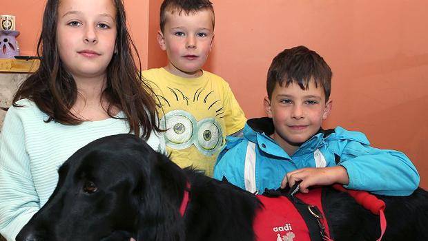 "Luke Gilligan ( on right) with his guide dog "" Skye "" brother , Ryan (5) and sister Casey (11), at their home in Portlaoise.               Photo; Michael Scully."