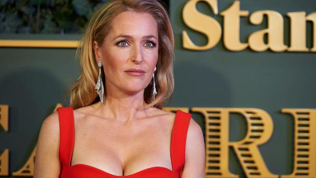 US actress Gillian Anderson poses on the red carpet as she arrives to attend the 61st London Evening Standard Theatre Awards at the Old Vic Theatre in London on November 22, 2015.