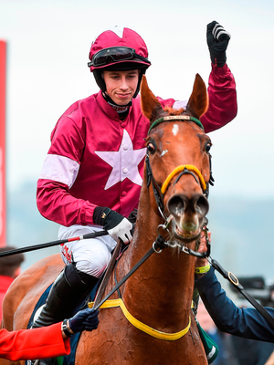 Road To Respect's Cheltenham victory was also a winner for handicapper. Photo by Seb Daly/Sportsfile