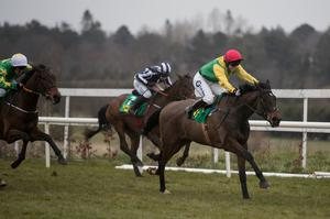 TALENT: Sizing Pottsie can demonstrate the potential he possesses at Thurles. Photo: Patrick McCann