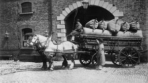 Moving with the times: Horses bringing bales of hops to the Guinness brewery at St James's Gate, Dublin, in the early years of the 20th century