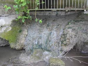 Storm water overflow at River Liffey Credit: Dr Frances Lucy