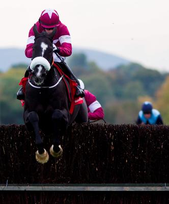 A lot of punters will be hoping that Don Cossack and Bryan Cooper can jump their way to King George glory at Kempton this afternoon (Photo: Patrick McCann/Racing Post)