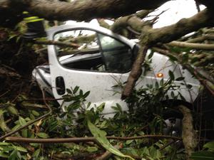 A van is crushed by a tree on the outskirts of Limerick city the Knocklisaheen Road on way to Meelick. Credit: Andrew Carey