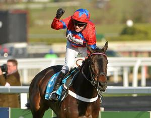 Sprinter Sacre, with Barry Geraghty up, on the way to winning the Queen Mother Champion Chase. Picture: Barry Cregg/Sportsfile.