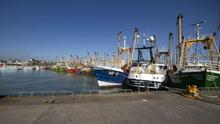 Fishing boats moored at Kilmore Quay in April