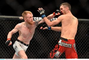 18 January 2015; Paddy Holohan, left, in action against Shane Howell during their flyweight bout. UFC Fight Night, Paddy Holohan v Shane Howell, TD Garden, Boston, Massachusetts, USA. Picture credit: Ramsey Cardy / SPORTSFILE