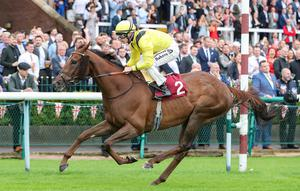 ANTIPODES: Addeybb did well in Australia in the spring. Photo: racingpost.com