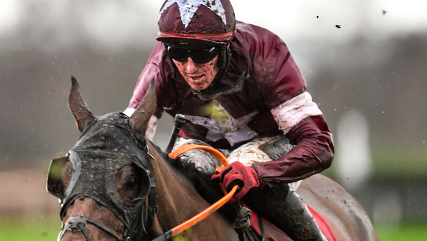 Tiger Roll impresses on return at Ladbrokes Ireland Boyne Hurdle in Navan