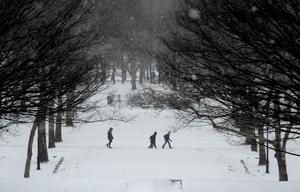 People walk in falling snow in Fort Greene Park in the Brooklyn borough Brooklyn in New York City January 26, 2015. REUTERS/Stephanie Keith