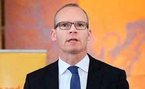 Rates revamp: Simon Coveney plans major tax changes. Photo: Steve Humphreys