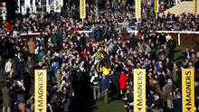 CRITICISM: Huge crowds attended the Cheltenham Festival last week. PA via Reuters