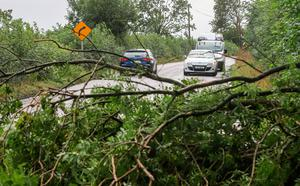 Motorists contend with downed trees on the N72 just outside of Fermoy in County Cork following Storm Ellen   Photo credit: Damien Storan/PA Wire
