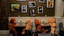 It's lovely down in the woods today: Teddy bears demonstrate safe social distancing at Pacinos restaurant. Photo: Gareth Chaney, Collins