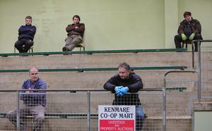Social Distancing at Kenmare Mart, Co Kerry. Photo: Valerie O'Sullivan